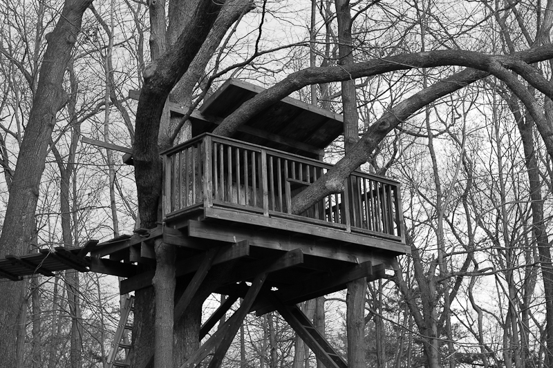 manson treehouse 2010