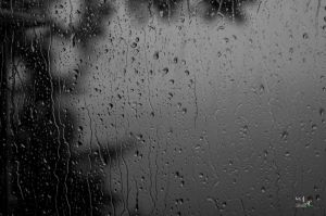 rainy day (1 of 1)-c32.jpg