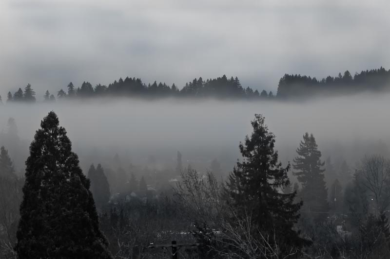 Fog in the valley